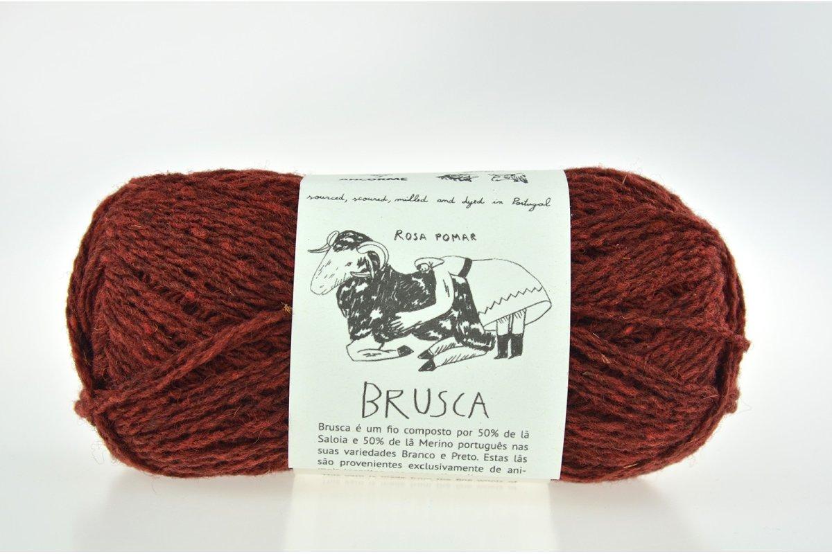 Rosa Pomar BRUSCA - terakota 8C
