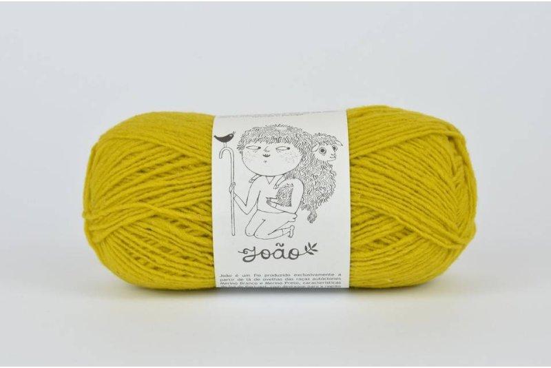 Rosa Pomar JOAO - żółta 914