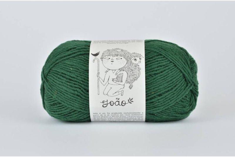 Rosa Pomar JOAO - ciemna zielona 916