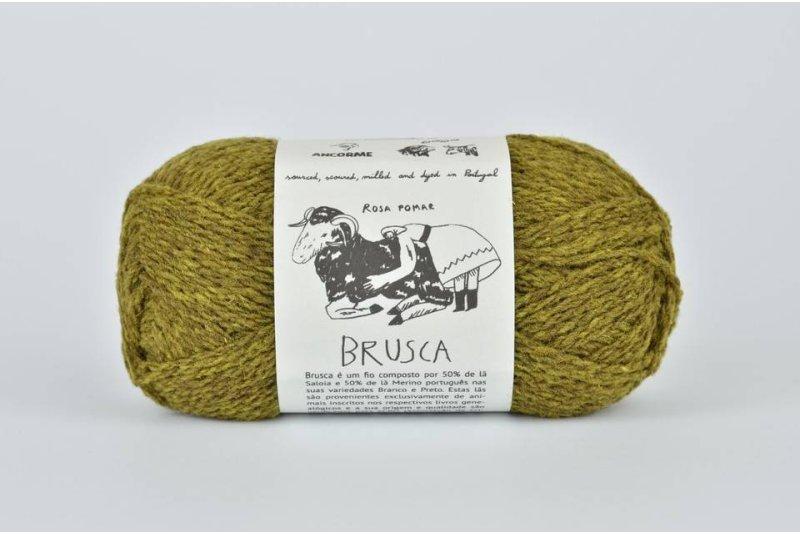 Rosa Pomar BRUSCA - zielona leśna 3C