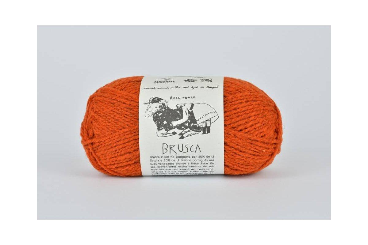 Rosa Pomar BRUSCA - ceglasta 6B