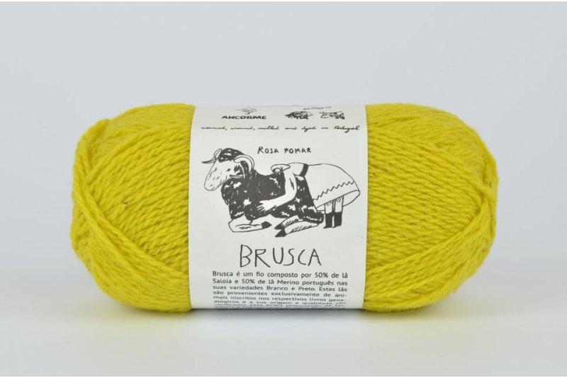 Rosa Pomar BRUSCA - cytrynowa 3A